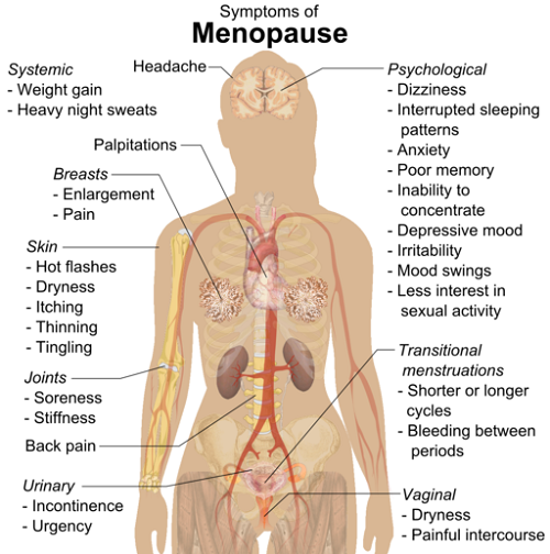 symptoms_of_menopause_raster