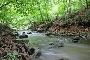 Difference between a creek, a river and a stream