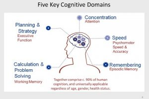 Difference Between Cognition And Perception